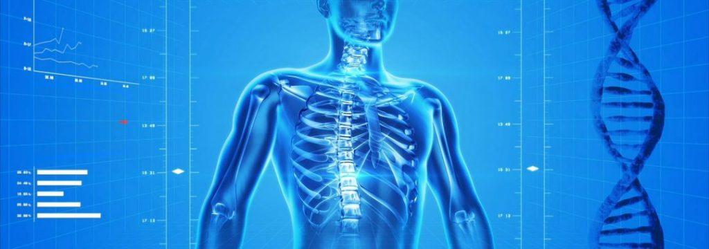 Osteoporose Erfolgreich Knochenbrueche verhindern